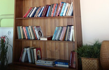 книги, книжная полка, учебники, литература